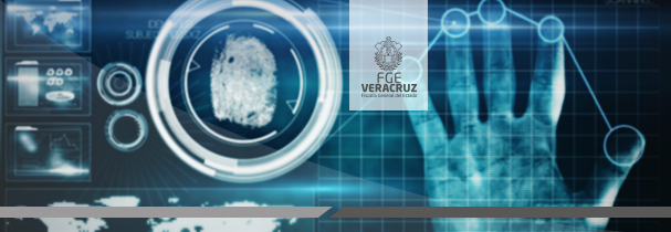 Reconoce grupo de transportistas trabajo de Grupo de Coordinación de Veracruz en región centro