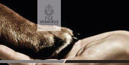 Capacita Fiscal Especializado a ayuntamiento de Papantla en materia de protección animal y ambiental